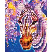 Supporto in cartoncino per ricamo diamante - RTO - zebra arcobaleno