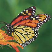Kit ricamo diamante - Diamond Art - farfalla monarca