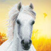 Kit ricamo diamante - Diamond Art - Cavallo bianco