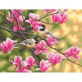 Kit di pittura per numero - Dimensions - Cince e magnolie