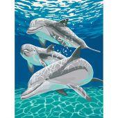 Kit di pittura per numero - Dimensions - Delfini al sole