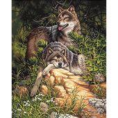 Kit di pittura per numero - Dimensions - Lupi selvaggi e liberi