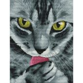 Kit Punto Croce - Nova Sloboda - Signor gatto