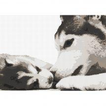 Kit Punto Croce - Marie Coeur - Husky e il suo cucciolo