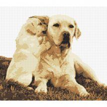 Kit Punto Croce - Marie Coeur - Labrador e il suo cucciolo