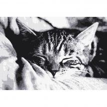 Kit Punto Croce - Marie Coeur - Sonnellino del gattino