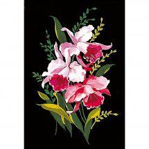 Canovaccio antico - Margot de Paris - Le orchidee