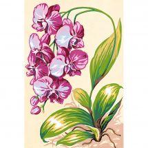 Canovaccio antico - SEG de Paris - L'orchidea