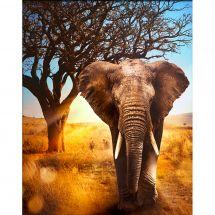 Kit ricamo diamante - Diamond Painting - Elefante africano