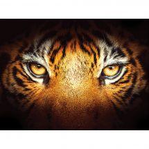 Kit ricamo diamante - Diamond Painting - lo sguardo della tigre