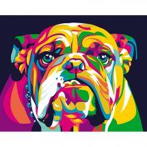 Kit di pittura per numero - Wizardi - Bulldog inglese arcobaleno
