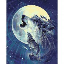 Kit di pittura per numero - Wizardi - Lupi sotto la luna