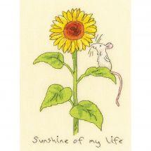 Kit Punto Croce - Bothy Threads - Il sole della mia vita