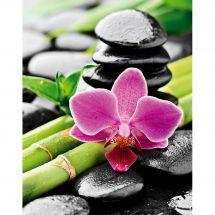 Kit ricamo diamante - Collection d'Art - Orchidea e bambù