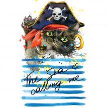 Kit ricamo diamante - Collection d'Art - Gatto pirata