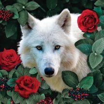 Kit ricamo diamante - Collection d'Art - Lupo bianco e rose
