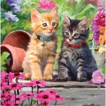 Carta con ricamo a diamante - Crystal Art D.I.Y - Amici gatti