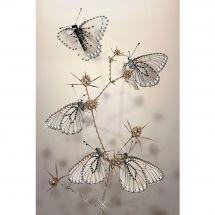 Ricamo Cristallo - Charivna Mit - Cuscino da ricamare farfalle