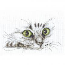 Kit Punto Croce - Charivna Mit - Sguardo di gatto