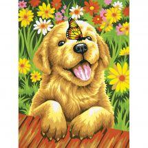 Kit di pittura per numero - Dimensions - Cucciolo giardiniere