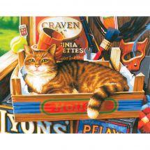 Kit di pittura per numero - Dimensions - Segni di gatto
