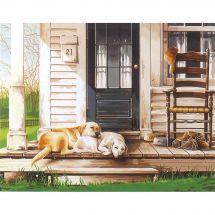 Kit di pittura per numero - Dimensions - Giorno del cane pigro