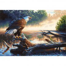 Kit di pittura per numero - Dimensions - Aquila da caccia