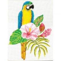 Kit Punto Croce - Ladybird - Ara ibisco