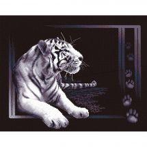 Kit Punto Croce - Panna - Tigre bianco