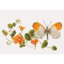 Kit Punto Croce - Théa Gouverneur - Capucine e farfalla