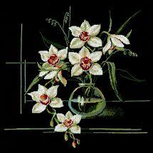 Kit Punto Croce - Riolis - Orchidea bianca