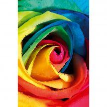 Kit ricamo diamante - Wizardi - Rosa arcobaleno