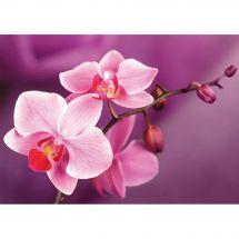 Kit ricamo diamante - Wizardi - Ramo delle orchidee