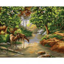 Kit di pittura per numero - Wizardi - Mattina nella foresta