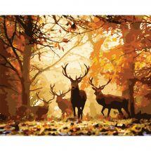 Kit di pittura per numero - Wizardi - Cervo della foresta